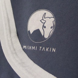 Aye Cayambe: Mishmi Takin review